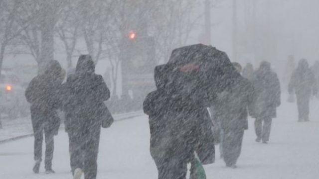 24 декабря в Ленобласти ожидается порывистый ветер до 20 м/с