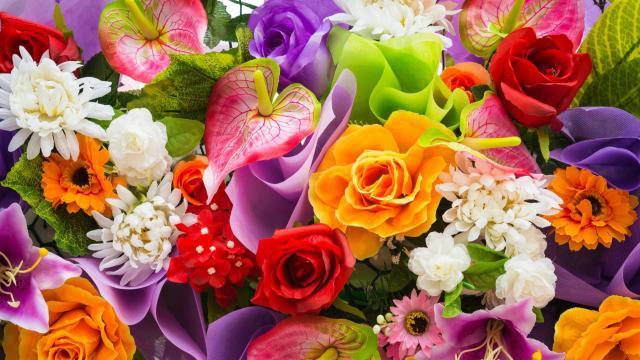К Международному женскому дню в Петербург были доставлены миллионы живых цветов