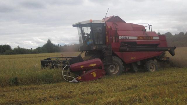 В Ленинградской области начался сев озимых зерновых.