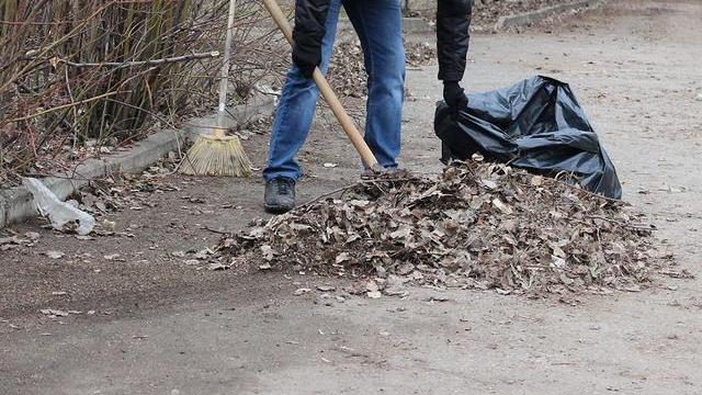 В Ленинградской области объявлен сезон чистоты